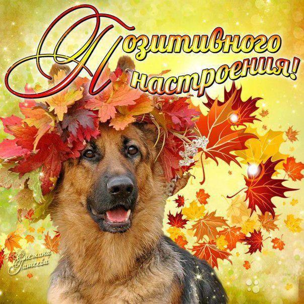 Осень позитивного настроения