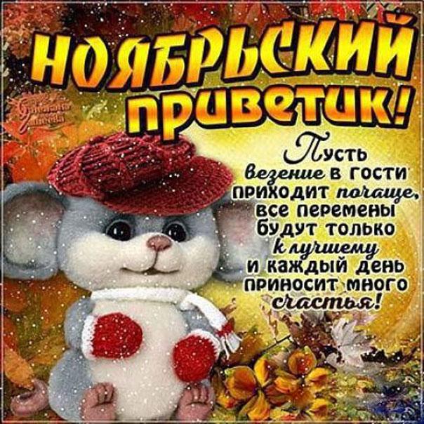 Ноябрьский привет
