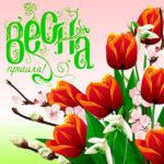 На телефон картинки весна пришла