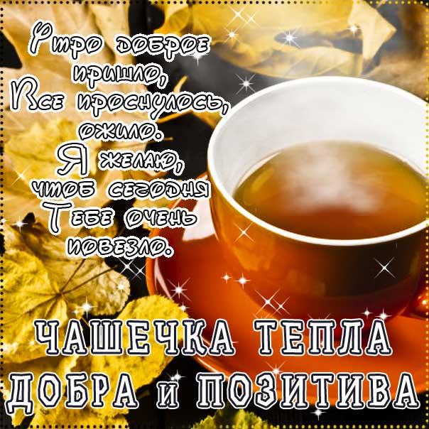 Доброе утро картинки, картинки утро чашечка тепла, позитивного утра, картинка утро доброе настало, с добрым утром открытки, с пожеланием хорошего утра, доброе утро осень кофе, утро кофе надпись, удачного утра открытки, сказочно красивого утра, сладкого утра, восхитительного утра, бодрого тебе утра, солнечного утра
