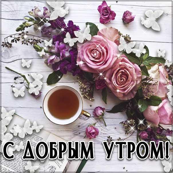 Замечательного утра, теплого утра, нежного утра, доброе утро чудесного солнечного дня, прекрасное утро, ласкового утра, радостного утра