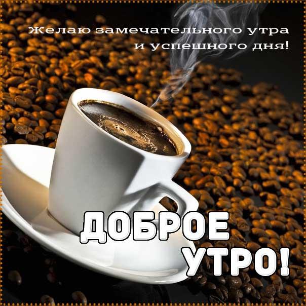 Доброе утро, бодрого тебе утра, солнечного утра, чудесных эмоций, замечательного утра, теплого утра, нежного утра