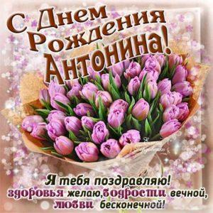 Открытка с днем рождения Антонина. Букет тюльпанов, тюльпан, с фразами, стих надпись