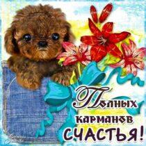 Желаю счастья картинка с фразами. Щенок, карман, цветы, счастья тебе.