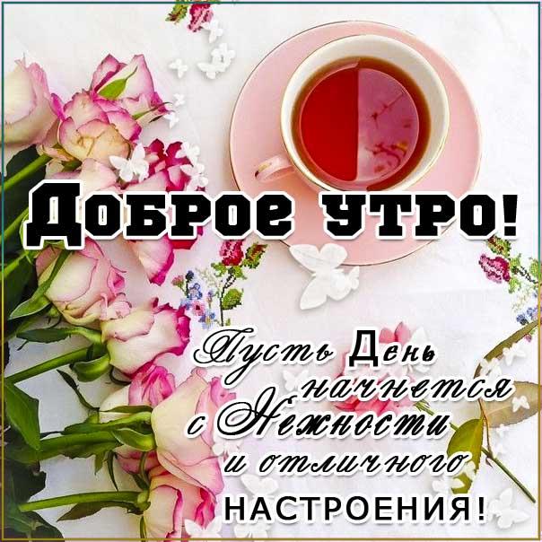 С добрым утром, про утро картинки, пожелать доброго утра, утро чай, розы волшебного утра