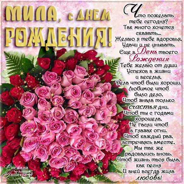 Милочка Днем рождения мерцающая открытка. Букет, розы, букет из роз, розовые розы, с надписью, фразы, Мила, красивая картинка.