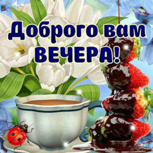 Желаю доброго вечера