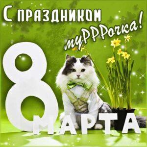 Мерцающая картинка 8 Марта девушке. Любимой 8 Марта, люблю пожелание, большой любви, с фразами, девочке с любовью, открытка женщинам, кот мартовский.