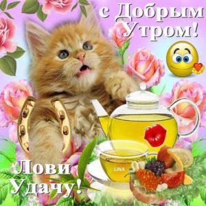 Бесплатные открытки с добрым Утром