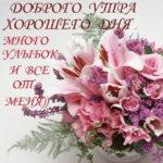 Хорошие позитивные открытки доброе Утро