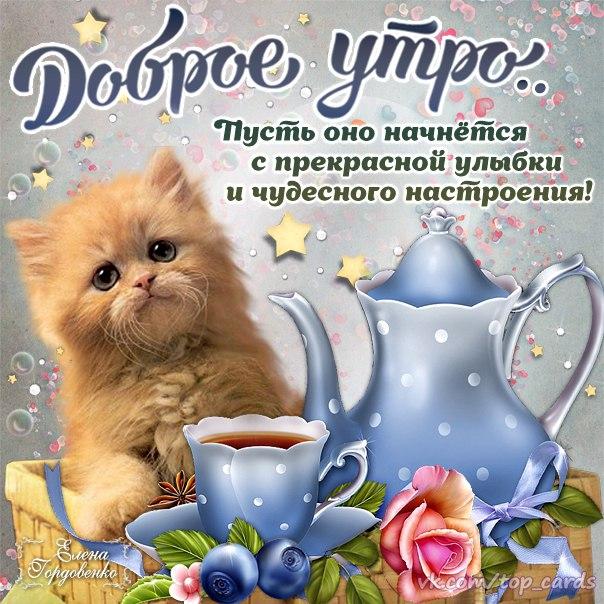 веселые открытки с добрым утром
