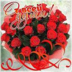 Позитивные открытки красивые розы